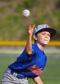 Polk County Youth Baseball 2015