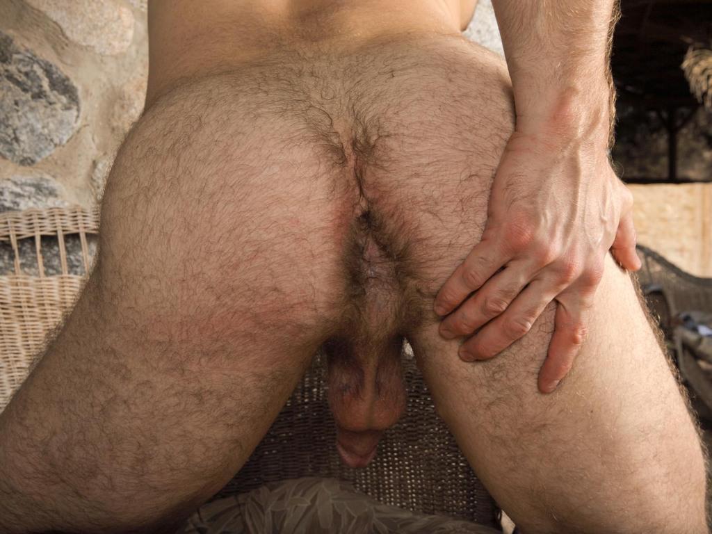 Волосатый хуй в волосатой жопе — photo 6