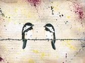 Birds/ Oisseaux