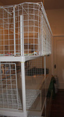 Acrylic and Grid Stacked Cages by Kathy