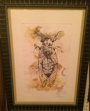 Beetle Art