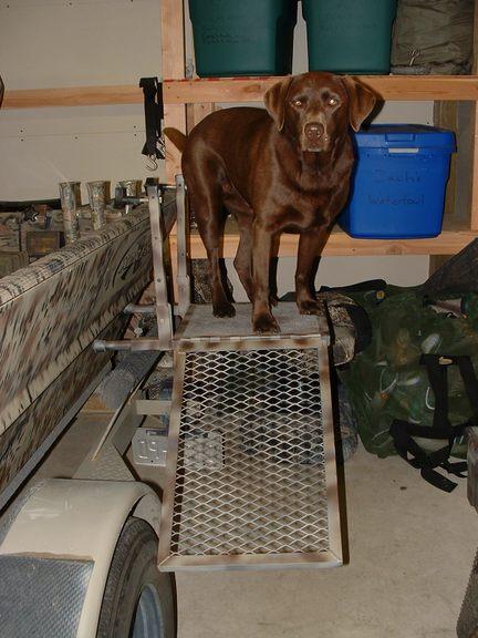 Dog Platform Ladder Any Ideas Refuge Forums
