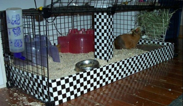 how to make a hamster cage with household items