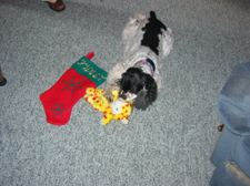 Christmas2005