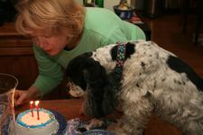 Molly's 11th Birthday