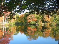 Trout Pond, Noyac, New York