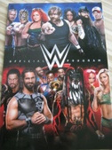 wwe wwf Tour Program Collection