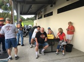Manatee Springs - Chapter Picnic