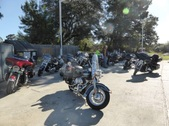 New Smyrna Hog Keynote ride