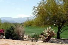 CALIFORNIA DESERT - 2009