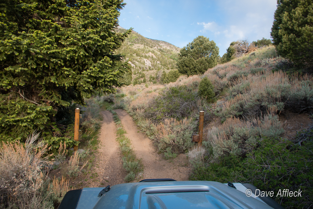 Newly re-opened WSA boundary gate in Tom's Canyon