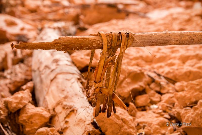 Anasazi yucca fiber cordage