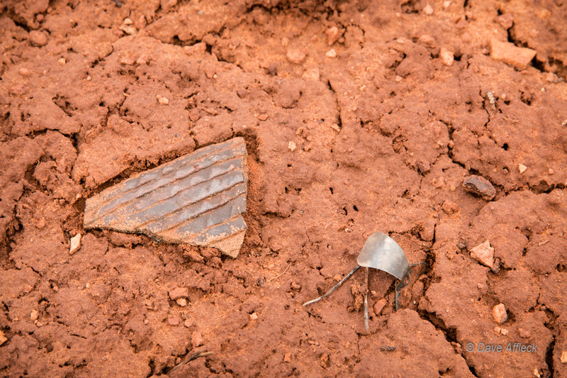 Potsherd and pull tab laying together on forest floor