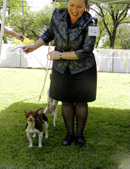 LOOMIS DOG SHOW - APRIL 28-29 2012
