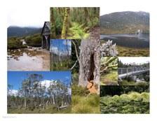 Tasmania #02