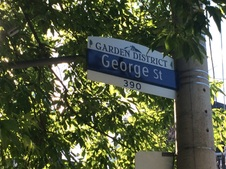 George Street North of Dundas