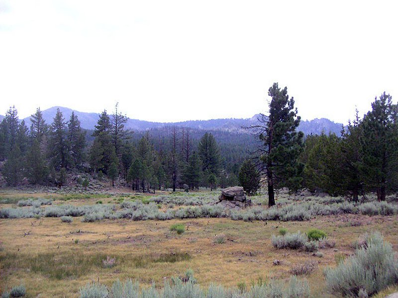Kennedy Meadows