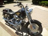 2005 Harley Fatboy
