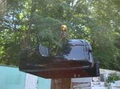 2009 Dodge Ram 3500 Pick Up bed for sale
