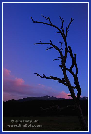 Dusk, Moraine Park, Rocky Mountain National Park