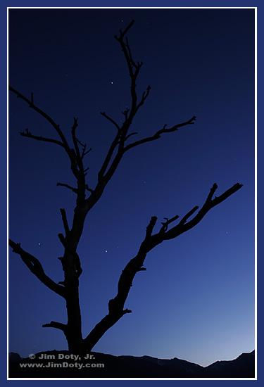 Night, Moraine Park, Rocky Mountain National Park