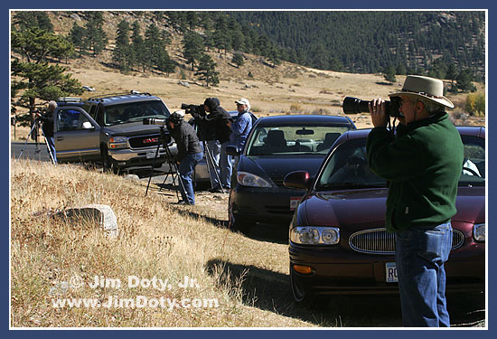 Photographers filming elk, Rocky Mountain National Park, Colorado
