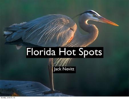 Hot Spots of Florida