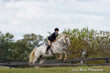 Sandstone Horse Show