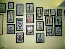 <b>My Display Wall<b/>