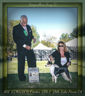 UKC Champions from Seegmiller Kennel