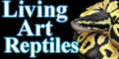 Living Art Reptiles