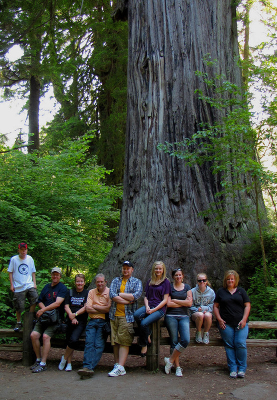 redwoods_group.jpg