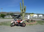 AZ TRAIL RIDE