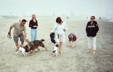 Coronado Island Dog Beach