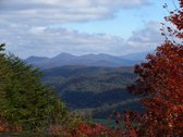 FALL FOLIAGE - GREAT SMOKY MTNS 2009