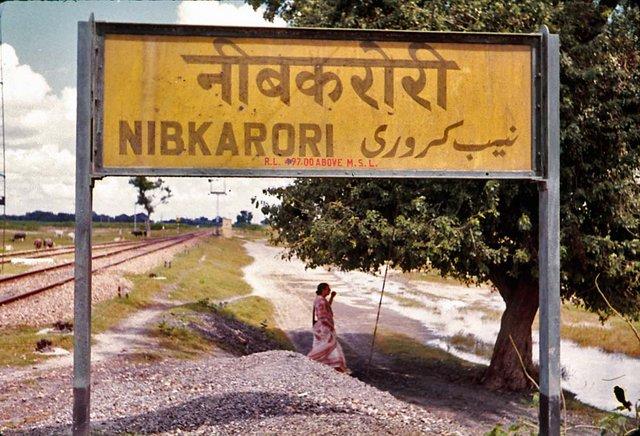 Maharaji Color various locations #1