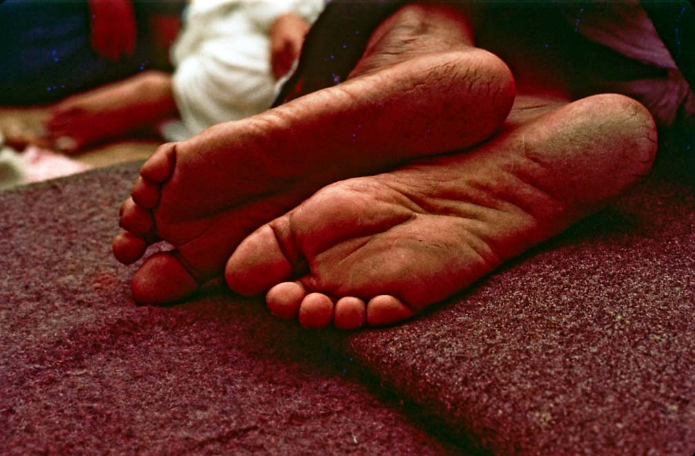 Maharaji's Feet  Album