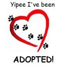Happy Hearts Adoptions