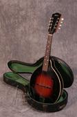 Gibson A50 Mandolin 1930's