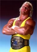 Perfect Hitman WWF Mr. Perfect Promos