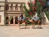 P&D: Morocco 2002