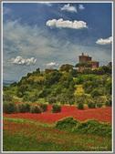 Italy 2011 trip