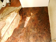 Outback Floor Water Damage