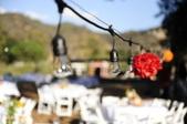 The Lovely Wedding