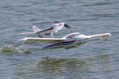 Long Lake Float Fly August 20, 2016