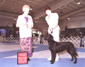 AKC CH and UKC CH Suncoast Liberty Belle