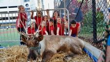 ASP Reindeer Event