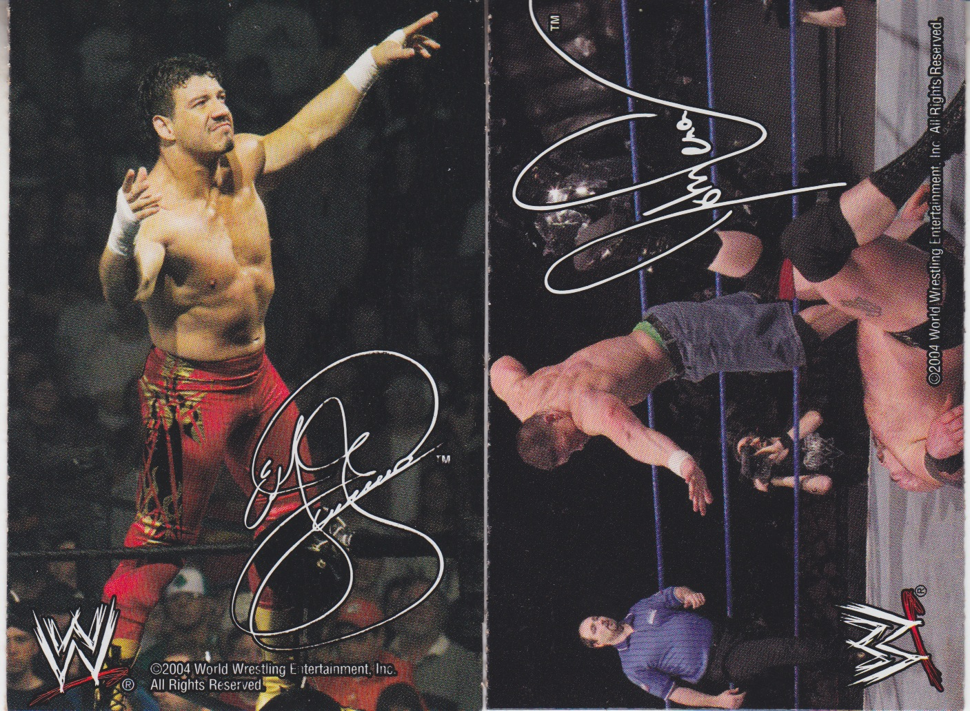 Photo 200 Of 424 Pro Wrestling Trading Card Collection