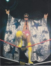 Supplex55 WWE/WCW Photo File Album