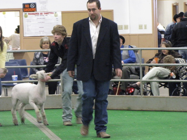 Ring hlep at the stock show